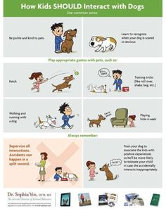 How Kids SHOULD Interact With Dogs - Lola The Pitty 'My Dog Bit My Child' - poster via Dr. Sophia Yin - longer article with posters and advice about how children should interact with dogs. Dogs And Kids, Animals For Kids, Pet Dogs, Dogs And Puppies, Doggies, Dogs 101, Rescue Dogs, Education Canine, Dog Poster