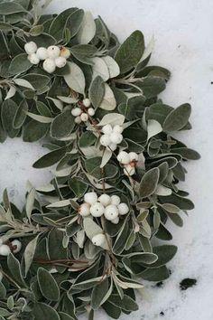 DIY.. Fresh Mistletoe Wreath!