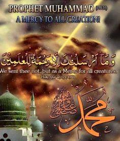 Islam: Who was Muhammad Islam Beliefs, Islam Religion, Learn Quran, Learn Islam, Prophet Quotes, Beautiful Love Images, Jumma Mubarak Images, Quran Mp3