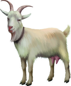 Реальные козы векторной графики