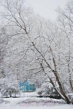 aqua barn in snow