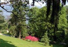 Villa PALLAVICINO - Stresa