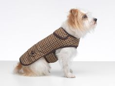 Lilly's mum provided the inspiration for this stylish daywear collection. Hand-woven in pure wool from the cheviot sheep, the fabric is known as 'nature's miracle' as it's extremely soft, windproof and showerproof.  Each #tweed #dogcoat is cut out by hand using one of our unique, specially drawn patterns. All the pieces are pinned and then individually sewn using top quality thread and meticulous stitching and real leather buttons…