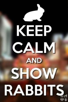 Keep clam and show rabbits- and educate yourself before preaching on any of my pins about animal welfare!!