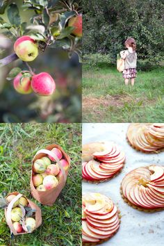 Mmmm. La Tartine Gourmande. Food, photography, nice writing, beautiful people. What's not to love?