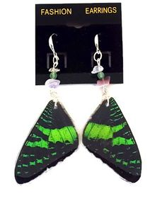 Real Butterfly Wing Earrings. Spring Meadows Butterfly Wing Jewelry. SPRISUNS