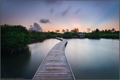 https://flic.kr/p/Kmghnr | Walking on the Water | Les Salines, Martinique