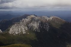 TasTrails - Frenchmans Cap