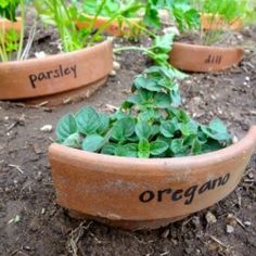 label your herbs with recycled (broken) terra cotta pots