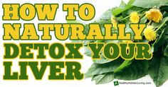 How to Naturally Detox your Liver - Healthy Holistic Living