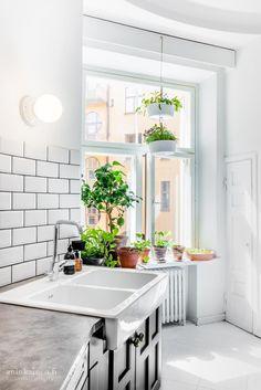 Pieni keittiöpuutarha ikkunalla ilahduttaa ruuanlaittajaa antimillaan ja antaa kodikasta ilmettä keittiölle.