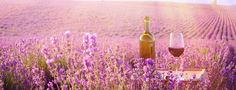Wine and Lavender