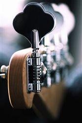 musical inspiration: guitar macro photography from #BobDaalder at #ModernMural