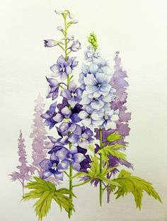 purple flowers water color