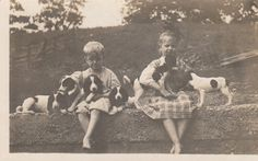Vintage Postcard English Springer Spaniel Dogs and Little Girls RPPC Photo
