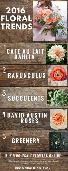 DIY wedding flower projects .Fabulous Florals is The #1 resource for all of your DIY Wedding Flower needs! Buy wholesale diy flowers here: www.bulkwholesaleflowers.com #diyflowers #weddingflowers #diywedding #weddingtrends #succulents #ranunculus #dahlia #davidaustin