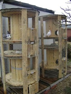 Chicken coops from empty wire spools.