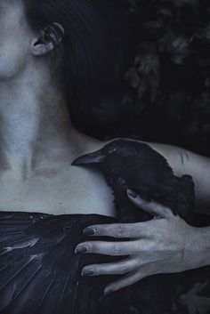 black, raven, and crow image Dark Fantasy, Potnia Theron, Yennefer Of Vengerberg, Quoth The Raven, Crows Ravens, Dark Beauty, Gothic Beauty, Macabre, Dark Art