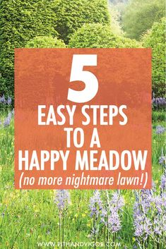 From nightmare lawn to happy meadow in 5 easy steps