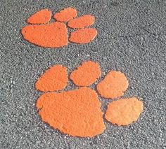 Clemson Tiger Paws on the highway leading into Clemson, SC