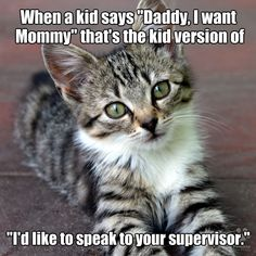 Funny Animals With Captions, Funny Animal Quotes, Animal Jokes, Funny Animal Pictures, Cute Funny Animals, Funny Cats, Puppies And Kitties, Dogs, Cat Jokes