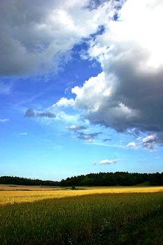 Summer- Sweden  | Flickr - Photo Sharing!