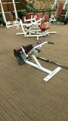 Look what I just listed on @eBay - Paramount XFW-5600 Roman Bench - $495! http://r.ebay.com/Ea1zoD