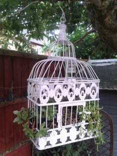 Spring Garden Ideas! Pretty Birds, Spring Garden, Bird Cage, Gazebo, Upcycle, Garden Ideas, Succulents, Outdoor Structures, Create