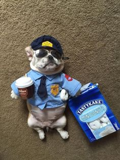 Fat little cop with his donuts lol