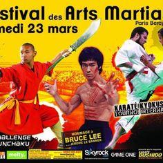Festival des Arts Martiaux Samedi 23 mars 2013 au Palais Omnisport de Paris-Bercy Martial, Bruce Lee, 2013, Karate, Mars, Banner, Comic Books, Comics, Cover