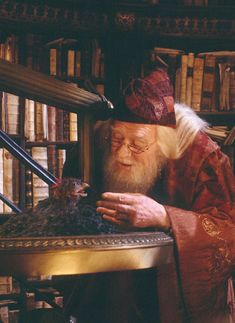 "Albus and Fawkes--RIP Richard Harris. I loved this scene. ""Your bird...it just caught fire!"""