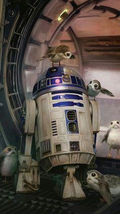 Buy Star Wars The Last Jedi Maxi Poster - & Porgs online and save! Star Wars The Last Jedi Maxi Poster – & Porgs Maxi Poster 61 × Our posters are rolled, wrapped and shipped in p. Star Wars Fan Art, Star Wars Droides, Film Star Wars, Star Wars Gifts, Star Wars Party, Star Wars Quotes, Star Wars Humor, Chewbacca, Luke Skywalker