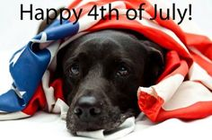 Happy 4th of July Everyone! Have a safe and happy holiday weekend! Enjoy!