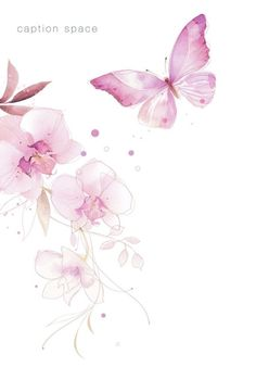 Leading Illustration & Publishing Agency based in London, New York & Marbella. Butterfly Wallpaper, Pink Butterfly, Butterflies, Flower Backgrounds, Wallpaper Backgrounds, Watercolor Flowers, Watercolor Paintings, Collages D'images, Muster Tattoos