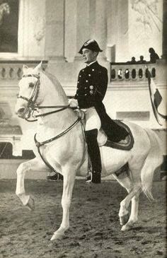 Colonel Alois Podhajsky is one of the most celebrated Directors of the SRS, he is famed for evacuating the stallions from Vienna during All The Pretty Horses, Beautiful Horses, Horse Spirit Animal, Lipizzan, Spanish Riding School, Horse Dance, Horse Silhouette, Majestic Horse, Dressage Horses