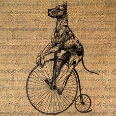 Great Dane Vintage Bicycle Bike Dog Digital Image Download Sheet Transfer To Pillows Tote Bags Tea Towels Burlap No. 1805 via Graphique Etsy