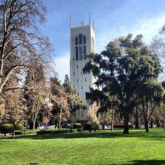 University of the Pacific şu şehirde: Stockton, CA