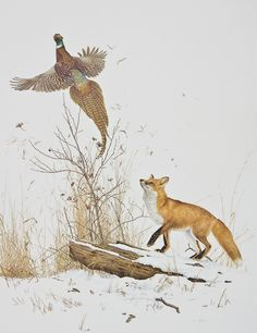 fox & pheasant- I grew up with this picture in our house. I love it.