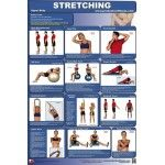 Stretching - Upper Body Fitness Poster