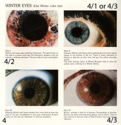#eyes bernice kentner's a rainbow in your eyes book. (on pg 29, kentner wrote she did not know who created typing by eye pattern.) YIN YANG TYPING BY EYE PATTERN.winter eye pattern = spokes (winter corresponds to #type4  in related systems)