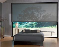 Roller Clutch Shade in a Bedroom - asian - roller blinds - boston - Window Fashions by Anderson's