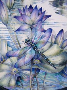 Dragonflies … how to paint them and what they mean! A new art class by Jody B … - Top 99 Pencil Drawings Silk Painting, Painting & Drawing, Dragonfly Art, Dragonfly Painting, Dragonfly Drawing, Oeuvre D'art, Art Techniques, Art Tutorials, Art Paintings