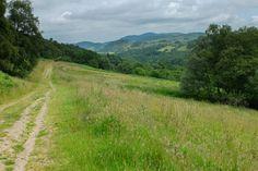 Glen Artney, Perthshire, Scotland http://www.walkhighlands.co.uk/lochlomond/callander-comrie.shtml
