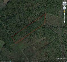 25 Acres in Leon County, Texas - Property - LandAndFarm.com - Land for Sale