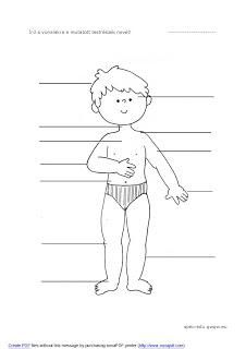 Here you can find worksheets, lesson-plans, flash-cards, exercises and activities for teaching the body, page 252 Vocabulary Worksheets, Printable Worksheets, Names Of Fingers, Nature Study, Science, Student Learning, Body Parts, Life Skills, Face And Body