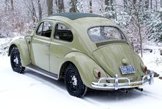 Bug Outlaw.....
