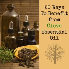 Mitigating the pain and suffering from a toothache is just one of the many ways to benefit from clove essential oil. Here are 20 ways to use clove oil some of which may surprise you. Clove Essential Oil, Essential Oil Uses, Doterra Essential Oils, Pure Essential, Herbal Remedies, Home Remedies, Natural Remedies, Natural Treatments, Young Living Oils