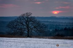 Goodnight Sun - Somewhere in the Baraboo Hills