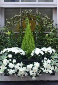 Understated Holiday Decorating & Finds - Hello Lovely - Gorgeous ivy, mums, and min. cypress, greenery in a window box in London. Grey painted brick and wh Succulents In Containers, Container Plants, Container Gardening, Window Box Flowers, Flower Boxes, Winter Window Boxes, Christmas Window Boxes, French Country Christmas, Winter Planter