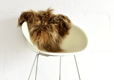 Sheepskin Chair Cover Red  40 x 40 Centimeters  by taftyli on Etsy, zł145.00